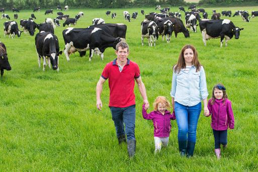 Edward & Breda Donovan winners of the 2018 Dairygold Milk Quality Awards are pictured with their children Caoimhe & Aoife on their farm at Ballybrannagh, Cloyne, Co Cork. Edward started milking in January 2014 as a new entrant to dairying & currently milks 203 cows from a grazing platform of 79ha. Photo O'Gorman Photography.