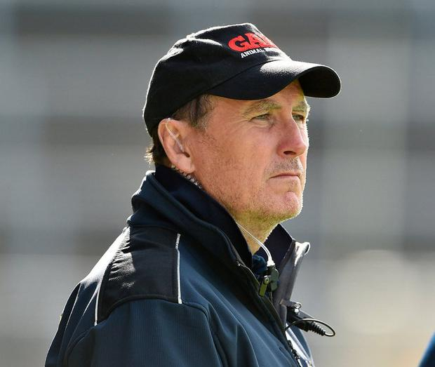 Paul McLoughlin resigned as Wexford manager after the match. Photo: Matt Browne/Sportsfile
