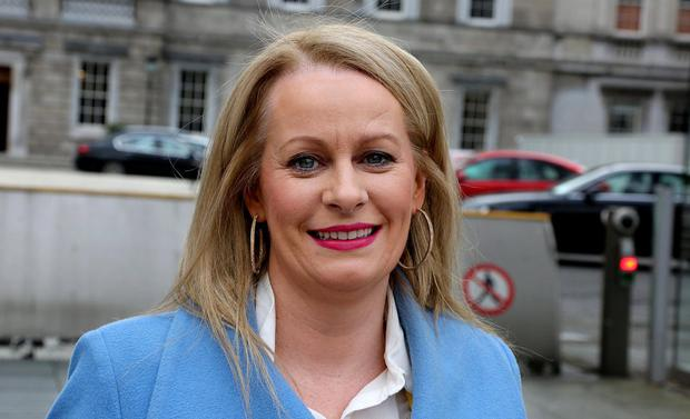Extra staff: The experience of Cavan TD Niamh Smyth helped sway the decision to give additional support to TDs on maternity leave. Photo: Tom Burke