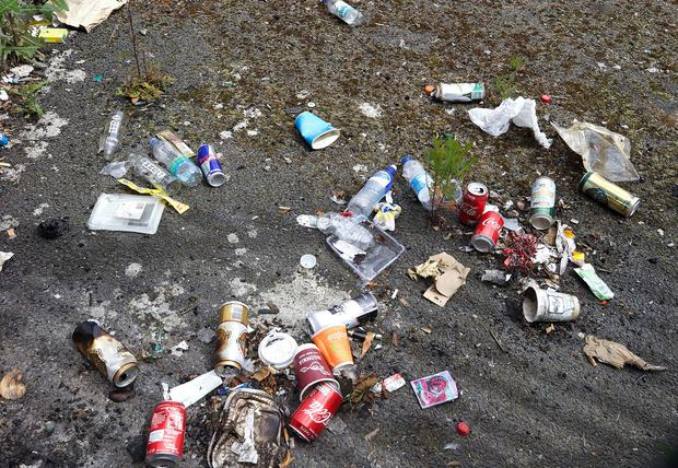 Load of rubbish: Litter on a street in north Dublin. Photo: Damien Eagers/INM