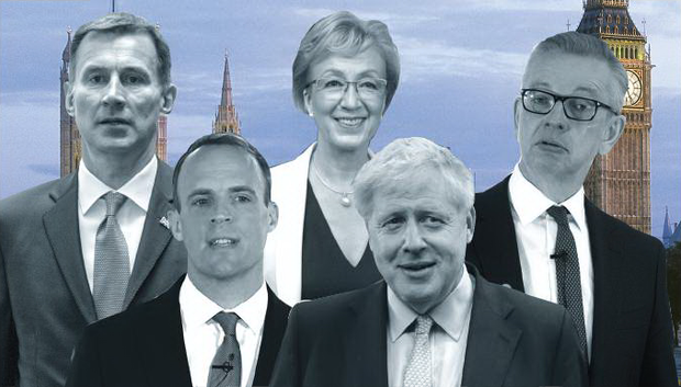 Tory tussle: Conservative Party grandees in the race for the leadership post include (l-r) Dominic Raab, Jeremy Hunt, Andrea Leadsom, Boris Johnson and Michael Gove.