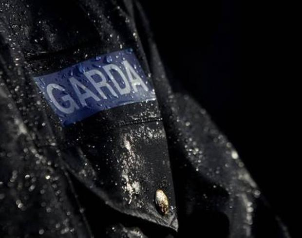 Chaperones: Gardaí escort illegal immigrants                       when expelled. Stock photo
