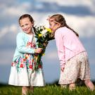Flower power: Twin sisters Erin and Naoise Craven (6), from Lusk, north Co Dublin, enjoy the weather. Photo: Mark Condren