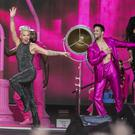 Pink on stage at the RDS .