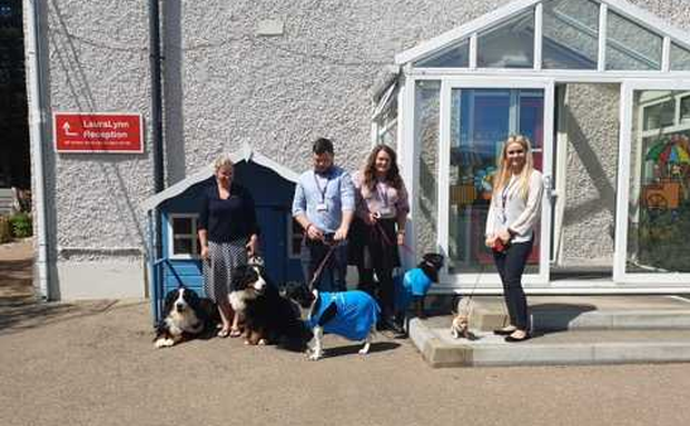 Some staff members and their dogs at Laura Lynn children's hospice today.