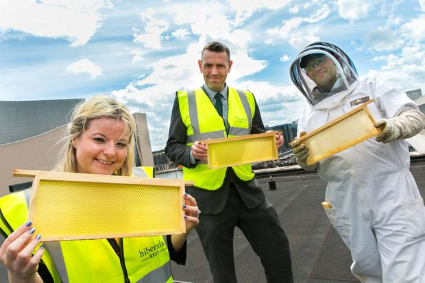 Lindsey O'Connell, HubSpot; John Cairns, Hibernia Reit; and Patrick Casey, Bee Green Ireland, with the hives at Two Dockland Central. Photo: Shane O'Neill/SON Photographic
