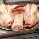 Some butchers are struggling to get pigs' heads, since demand took off in China.