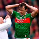 Mayo captain Diarmuid O'Connor is set to miss the rest of the Championship after fracturing a wrist in training. Photo: Stephen McCarthy/Sportsfile