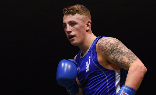 Kevin Sheehy boxing in Dublin last year. Photo: SPORTSFILE