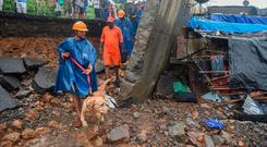 Rescue workers use dogs to se. Photo by PUNIT PARANJPE / AFP)PUNIT PARANJPE/AFP/Getty Images
