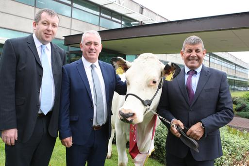Pictured at the launch of the 2019 Diageo Baileys Champion Dairy Cow Competition today at Diageo Baileys Global Supply in Dublin are from left Anthony Farrelly, Site Manager Glanbia Ireland Virginia; Robert Murphy, Head of Baileys Global Operations and Minister of State for Agriculture Andrew Doyle.