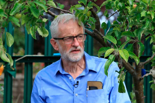 Jeremy Corbyn: The British Labour leader at a community garden project during a visit to Macclesfield this week. Photo: PA
