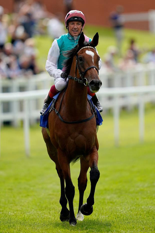 Frankie Dettori aboard Enable. Photo: Getty