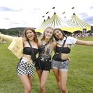 Day out: Revellers enjoy the sunny weather at Longitude Festival in Marlay Park. Photo: Sasko Lazarov/Photocall Ireland