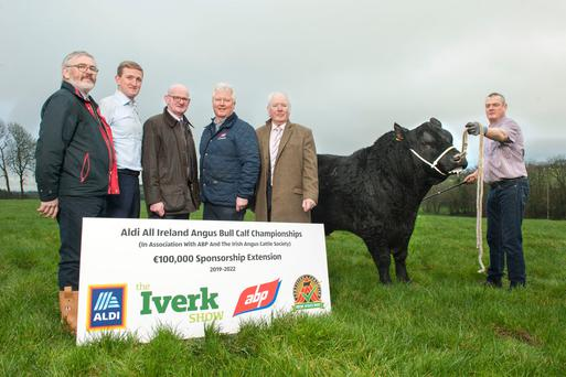 Prize fund: John O'Sullivan (Irish Angus Cattle Society president); Padraig Barry (Aldi); John Connolly (Iverk Show); Paul Mathews (ABP Group) and Michael Flanagan (Irish Angus All-Ireland Bull Calf Championships) with bull handler Ben Ryall at Fellort Angus Farm Watergrasshill, Co Cork. Photo: Daragh McSweeney/Provision