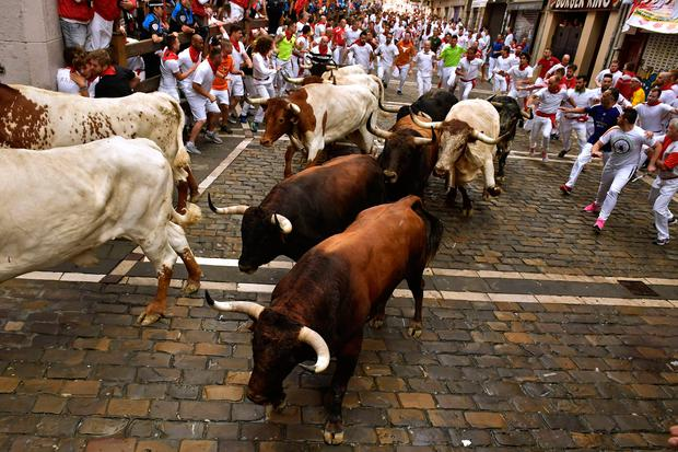 Revellers run next to fighting bulls from Cebada Gago ranch, during the running of the bulls at the San Fermin Festival, in Pamplona, northern Spain on Monday (AP Photo/Alvaro Barrientos)