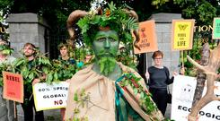 Anger: Extinction Rebellion activists protest. Photo: Justin Farrelly/PA Wire