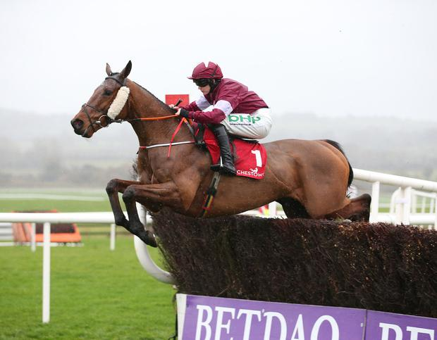 High rating: Judgement Day ridden by Rachael Blackmore winning at Punchestown last November