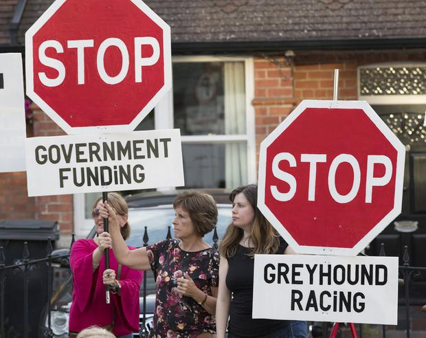 9/7/19 Animal Cruelty protesters demonstrate against Greyhound racing at Shelbourne Park racecourse in Dublin. Picture: Arthur Carron