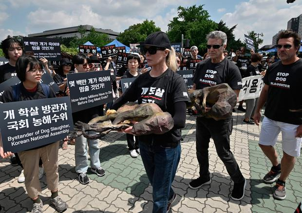 US actress Kim Basinger (C) and animal rights activists hold likenesses of dead dogs during a protest against the dog meat trade in front of the National Assembly in Seoul on July 12, 2019.(Photo by Jung Yeon-je / AFP)JUNG YEON-JE/AFP/Getty Images
