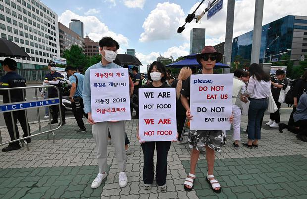 South Korean animal rights activists hold placards during a protest against the dog meat trade in front of the National Assembly in Seoul on July 12, 2019. (Photo by Jung Yeon-je / AFP)JUNG YEON-JE/AFP/Getty Images