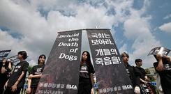 South Korean animal rights activists hold banners during a protest against the dog meat trade in front of the National Assembly in Seoul on July 12, 2019. (Photo by Jung Yeon-je / AFP)JUNG YEON-JE/AFP/Getty Images