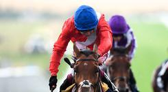Veracious, ridden by jockey Oisin Murphy, on the way to victory in the Tattersalls Falmouth Stakes during day two of the July Festival at Newmarket yesterday. Photo: PA