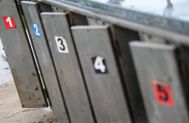 'The National Coursing Meeting in Clonmel, condemned as a barbaric anachronism by those eager to abolish greyhound racing, continues to draw big crowds every year.' Photo: Stephen McCarthy/Sportsfile
