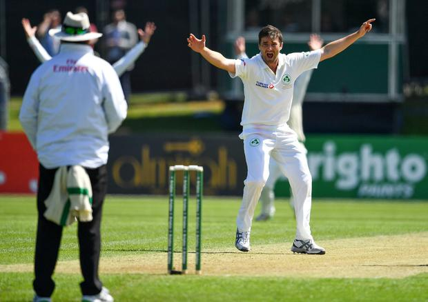 Tim Murtagh is looking forward to what promises to be a special week for Irish cricket at Lord's. Photo: Seb Daly/Sportsfile