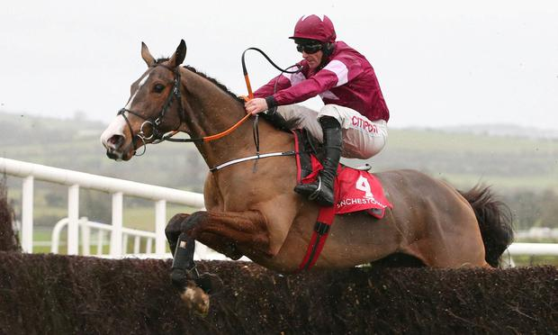 KHAN DO: Mengli Khan looks to be Gordon Elliott's main chance in the Galway Plate. Photo: carolinenorris.ie