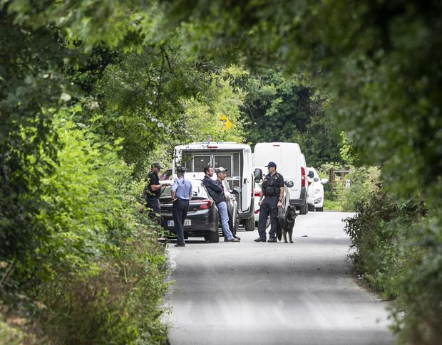 Raid: Gardaí with dogs at the search site off the M7. Photo: Kyran O'Brien