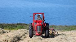 Farmer in Ventry, Dingle Peninsula, turning hay, with his trusted 1962 Massy Ferguson, as June temperatures improve for farmers. Photo:Valerie OSullivan/Date 21/06/2019