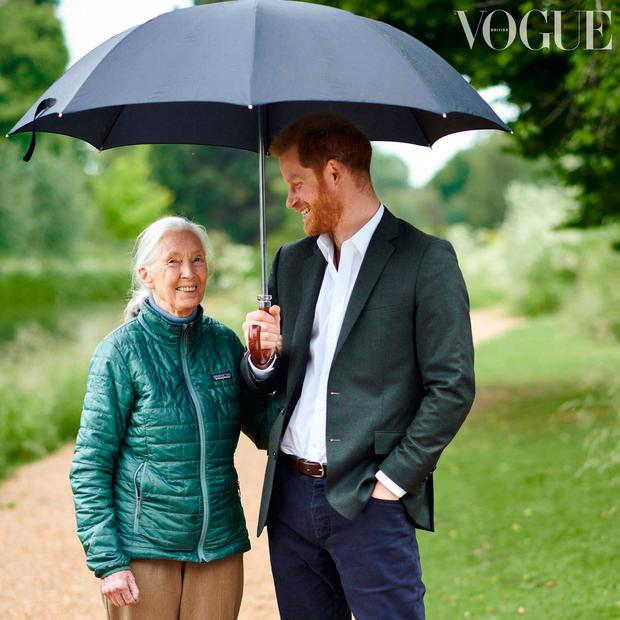 Conde Nast of the Duke of Sussex and ethologist Dr Jane Goodall as they appear in the British Vogue's September issue, entitled
