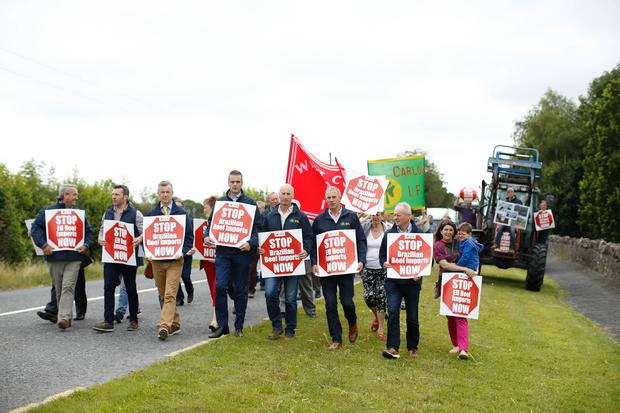 IFA's National Council and Livestock Committee Protest004.jpg