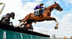 It's day five at the Galway Races