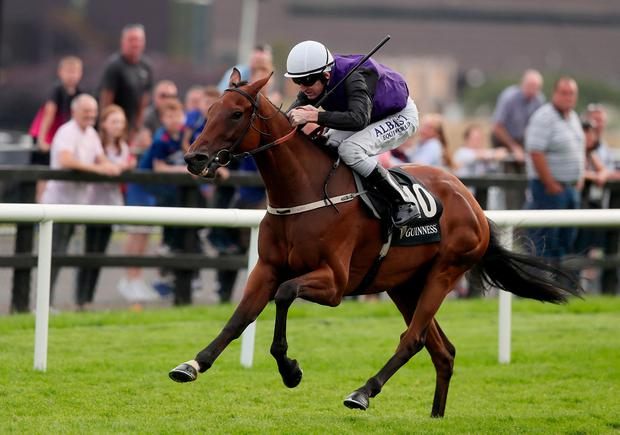 Mr Adjudicator ridden by Kevin Manning on the way to winning the Guinness Handicap during day five of the 2019 Summer Festival at Galway Racecourse. Photo credit: Brian Lawless/PA Wire