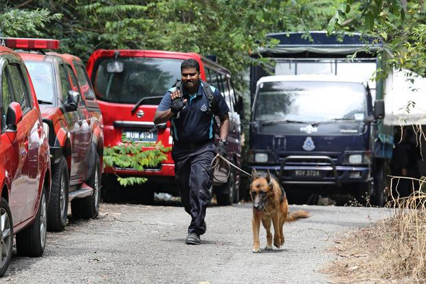 Major search: A police officer uses a sniffer dog to look for 15-year-old Irish girl Nora Anne Quoirin who went missing from a resort in Seremban, Malaysia. Photo: REUTERS/Lim Huey Teng