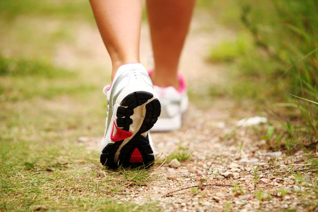Walking can delay brain and muscle ageing