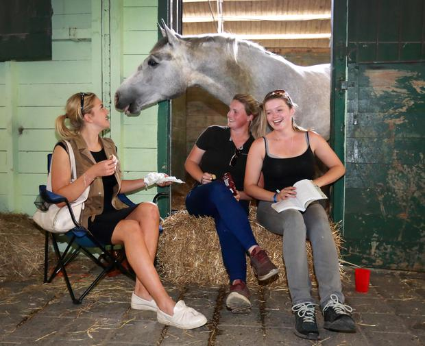 Neigh bother: Left, Mia Cleary from Cheltenham, and Caoimhe Mulconroy and Jess Parsons of Co Clare. Photo:Frank McGrath