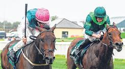 The Ger Lyons-trained Siskin and Colin Keane edge out Monarch Of Egypt (right) to capture The Keeneland Phoenix Stakes at the Curragh last night. Photo; Sam Barnes/Sportsfile
