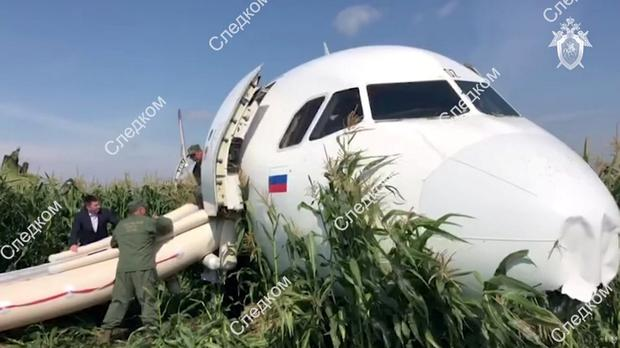The Ural Airlines Airbus 321 passenger plane following an emergency landing Russian Investigative Committee/Handout via REUTERS