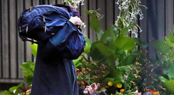 Out of jail: Tom Humphries hides his face with his bag as he leaves Midlands Prison early yesterday. Photo: Steve Humphreys