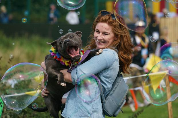 Rachel Atwell with her Staffordshire Izzy. Photo: Fran Veale
