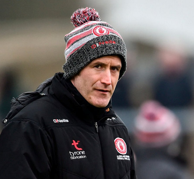 Stephen O'Neill has decided to step down. Photo: Oliver McVeigh/Sportsfile