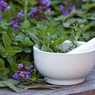 How to get the most out of your herb garden