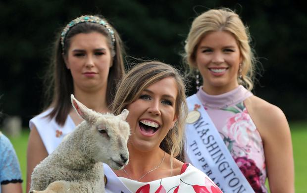 All smiles: Dublin Rose Laura Vines cuddles a lamb at yesterday's launch. Photo: Collins