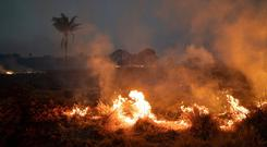 A fire burns a field on a farm in the Nova Santa Helena municipality, in the state of Mato Grosso, Brazil, Friday, Aug. 23, 2019. . (AP Photo/Leo Correa)