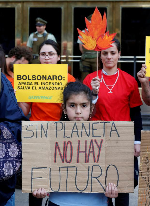 Demonstrators of environmental organizations take part in a rally in front to the embassy of Brazil in demand to more Amazon protection in Santiago, Chile August 23, 2019. The placard reads: