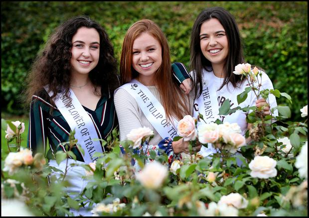 Ciara Delahunty (centre), from Ohio, with cousins Eimear (left) and Leisha O'Sullivan from Skerries in the Rose Garden in Tralee. Photo: Steve Humphreys