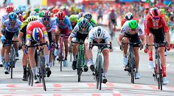 Team Deceuninck rider Netherlands' Fabio Jakobsen (L), Team Bora rider Ireland's Sam Bennett (C) and Team Sunweb rider Germany's Max Walscheid (R) cross the finish of the fourth stage of the 2019 La Vuelta cycling tour of Spain, a 175,5 km route from Cullera to El Puig, on August 27, 2019 in El Puig. (Photo by JOSE JORDAN / AFP)JOSE JORDAN/AFP/Getty Images